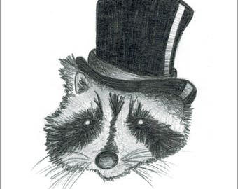 Dapper Raccoon
