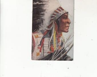 Native American Chief Wolf Robe Antique Postcard