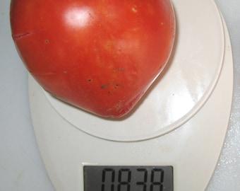 King Kong Heirloom Giant Tomato Seeds