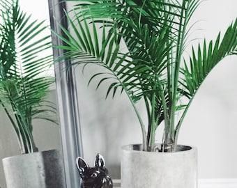 Concrete Planter (Pure Cylinder)