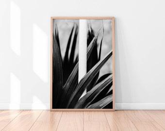 Black and white Leaves Printable Art, Botanical Print, Leaves Art Print Succulent Botanical Wall Art Plant Wall Art Print Digital Download