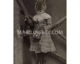 Squirrel Art Print, Animal in Clothes 8.5 x 11 Inch Print, Victorian Animal Wall Decor, Nursery Wall Art, frighten