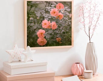 Garden flowers wall art, Roses photography, peach grey botanical print, large wall art, nature photo, roses square wall art, 12x12, 24x24