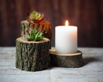 Succulent Pot, Succulent Wedding Centerpiece, Succulent Terrarium, wood planter terrarium centerpiece Air Plants Tillandsias faux succulents