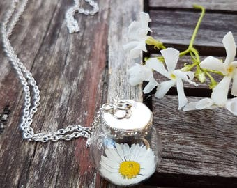 A daisy in a bottle necklace, tiny glass jar, margherita