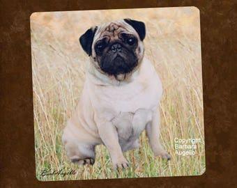 Pug Coasters, Pug Gift, Pug Art, Pug