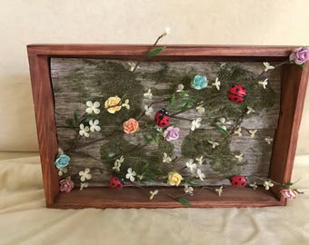 Lady Bug and Flowers in a box Frame
