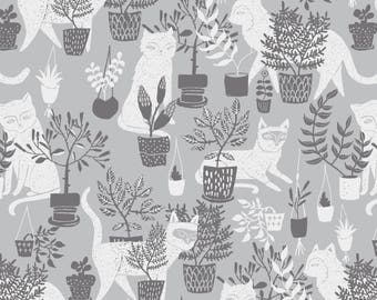 City Life Cats on Window Sill  Cotton Fabric Dear Stella   By the Yard