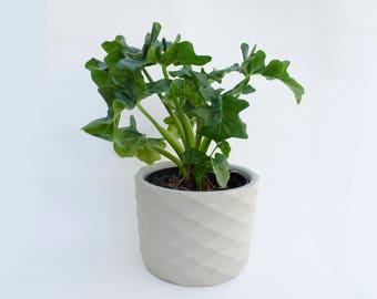 Indoor planter   Etsy