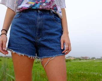 Vintage 90s Denim Cut offs by Liz Claiborne - 90s Light Wash Jean Shorts - Distressed High Waisted - 30 Waist