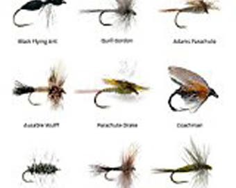Fly Fishing Lures Assortment for Trout Fishing and Other Freshwater Fish - 36 Dry Flies - 18 Patterns - Feeder Creek