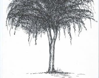Tree in black marker drawing
