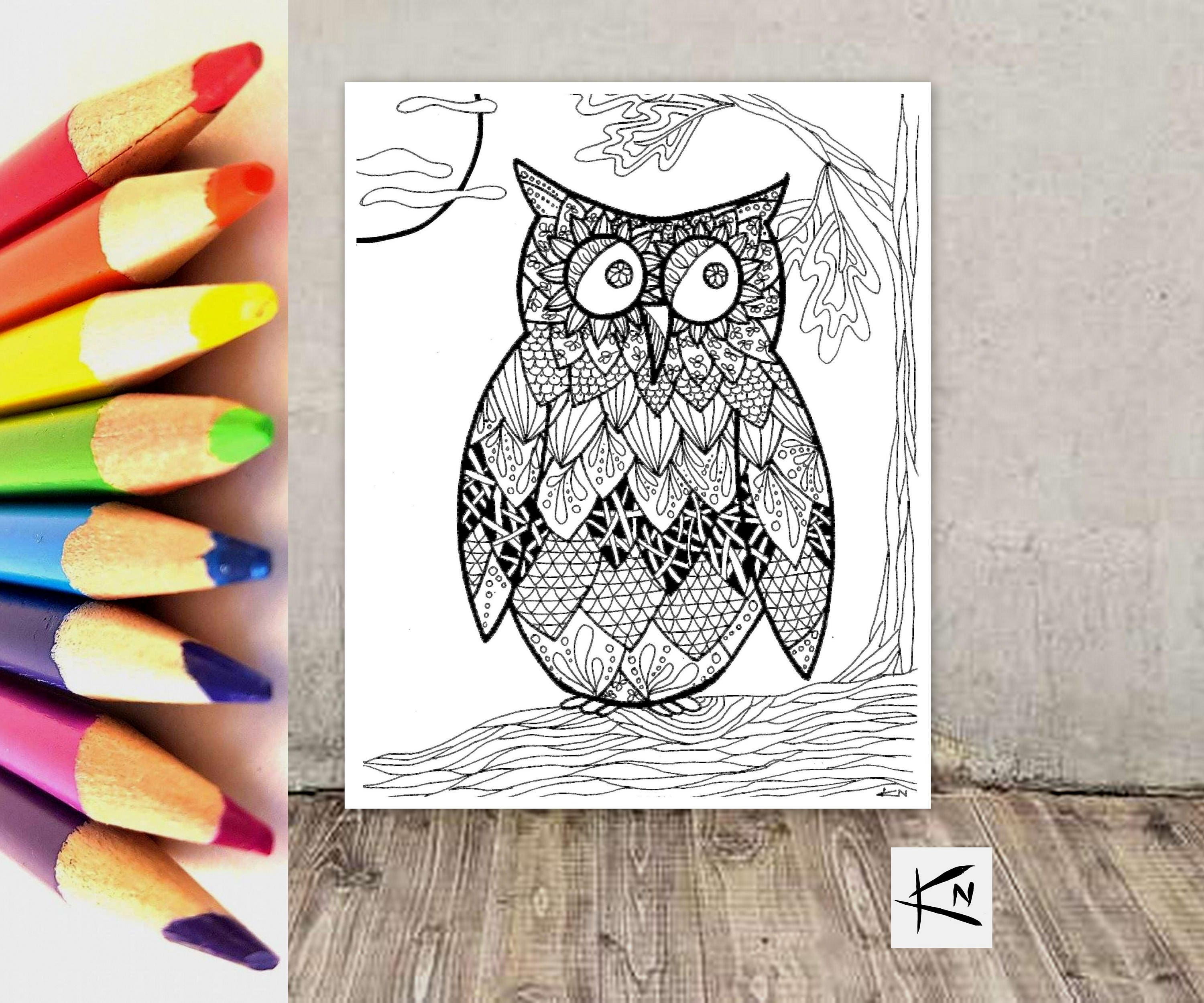 Adult coloring owl card blank greeting cards adult coloring adult coloring owl card blank greeting cards adult coloring pages arts and m4hsunfo