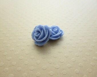 Set of 2 pink resin 13 mm blue - en-0679