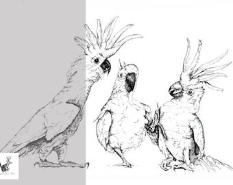 Talkative Mates - Original Ink Drawing