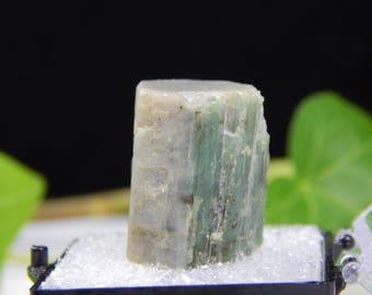 RARE Double Terminated Tourmaline Crystal var Elbaite w/ Unique Flat Top Terminations, Authentic 2003 Tamminen Quarry Maine Mineral Specimen