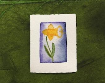 pocket art print - daffodil