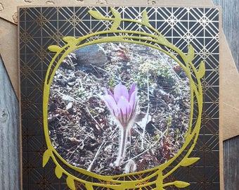 Pasque flower Alaska Mixed Media art greeting card