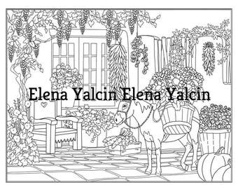 DIGITAL Coloring pages The Secret Garden