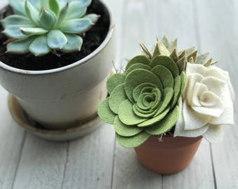 Potted Felt Succulent Arrangement, Felt Succulents, Felt Flowers