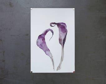 watercolor original painting | calla lilies