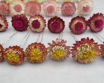 Set of 6 floral hair pins, dried flower hair pins, rustic hair pins, Boho style hair pins, wedding hair accessories, bridal hair pins