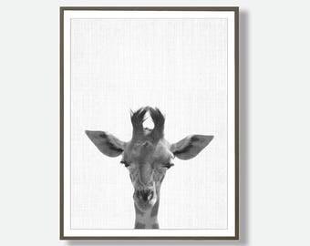 giraffe Printable, giraffe wall art, nursery Printable, giraffe Printable,Kids room art, playroom decor, Giraffe, Safari decor, Safari Art