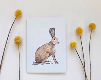 Hare Illustrated Greeting Card