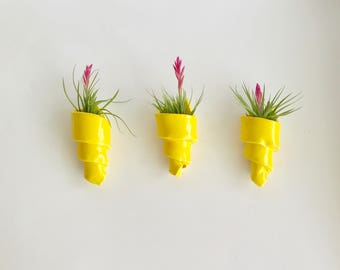 Set of 3 Handmade Spiral Air Plant Holders in Sun Yellow