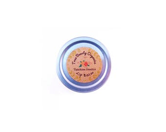 Lip Balms SPF 15 and Lip Scrubs