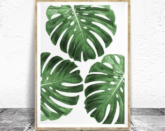 Monstera Leaf Print - Baydreem. Monstera Wall Art Tropical Plant Art Tropical Art Monstera Leaf Poster Monstera Art Printable Monstera Plant