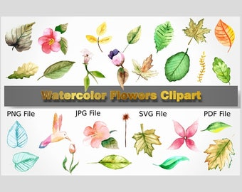Watercolor Flowers, Clipart Flowers, Wedding Flowers, Flowers Cliparts, Watercolor Clipart, Printable Flower, Doodle Flowers, Floral Clipart