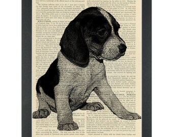 Puppy black and white drawing beagle