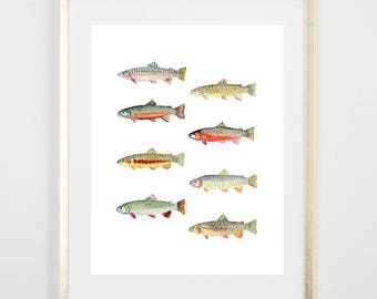 Trout Print / Fish Print / Rainbow / Painting / Father's Day fishing Birthday Gift for him / Decor / Gift for Dad / house warming