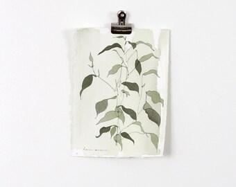 Green Blind Contour Botanical 1