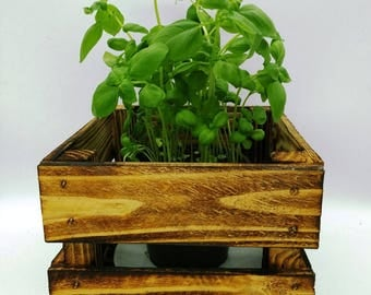 Basil, herb pot, flower pot, kitchen herbs, spices, planting bowl, Easter, cutlery box, bottle box, Planztopf, storage box