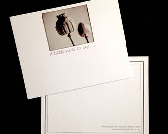 Poppy Seed Head Note Cards