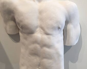 Young male torso plaque in  reinforced plaster.