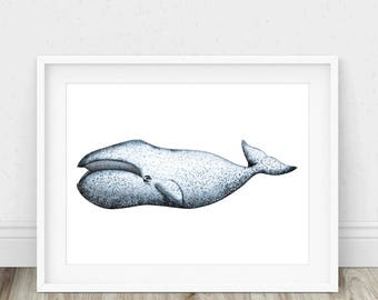 Bowhead Whale - Whale Poster, Whale Print, Whale Drawing, Nursery Whale Art, Whale Illustration, Bowhead, Whale Art Print, Whale Nursery
