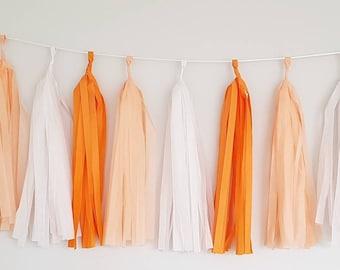 Peach and Tangerine Tassel Garland Kit