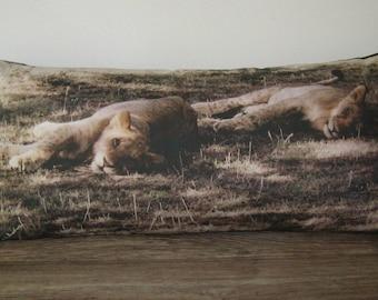 Includes Insert & Free Shipping! Lion pillow, Safari pillow, African Safari pillow, Nature pillow, Wildlife pillow, Photograph pillow