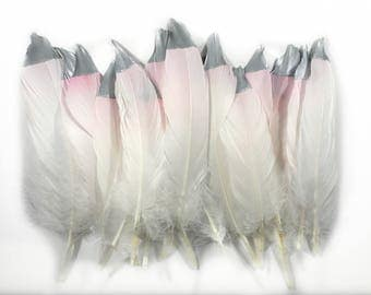 Craft Ombre Pink Silver Dipped Feathers- 6-8 inches