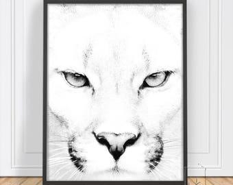 Puma Wall Art , Print, Animal Art, Safari Print, Animal Photo, Printable, Instant Download, Animal,Art ,Puma, Wall art, Puma Print, PDF,JPEG
