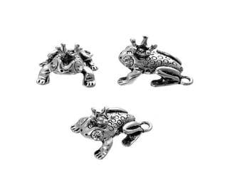 Frog Toad amphibian animal charm weather Crown Silver (C02)