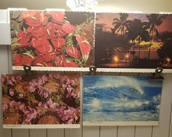 Lot of 4 Hawaiian postcards.