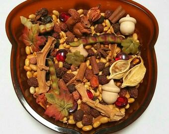 Acorn Sensory Bowl Reggio Emilia Loose Parts Montessori Nature Sensory Bin Waldorf Preschool Learning Fall Provocation Squirrel Open Ended