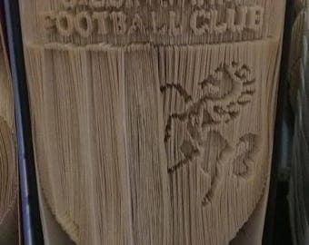 Gillingham FC Book art