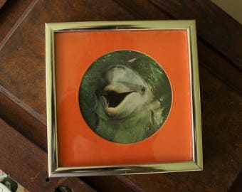 Retro Frame with Dolphin Print