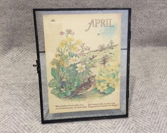 Genuine vintage framed botanical drawing, flower illustrations, print, floral, glass frame, double sided April birthday gift birds