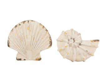 Seashell Drawer Knob